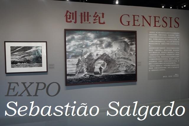 GrandBondMilieu_Sebastiao_Salgado_Shanghai