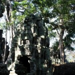 Angkor #3 : temples dans la jungle