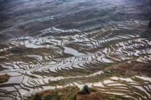 GrandBondMilieu-terrasses_rizieres_Yuanyang_Yunnan (12)