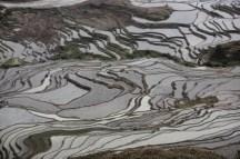 GrandBondMilieu-terrasses_rizieres_Yuanyang_Yunnan (13)