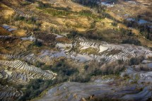 GrandBondMilieu-terrasses_rizieres_Yuanyang_Yunnan (23)