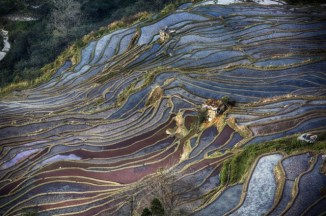 GrandBondMilieu-terrasses_rizieres_Yuanyang_Yunnan (28)