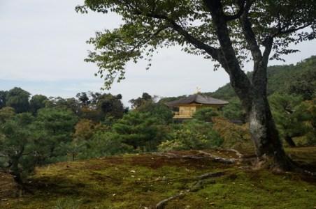 Le pavillon vu des hauteurs du jardin, à l'automne (2017)