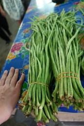 Very long green beans