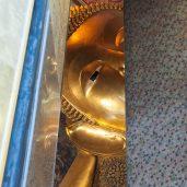 Je te vois Bouddha