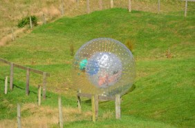 Mad people in a ball
