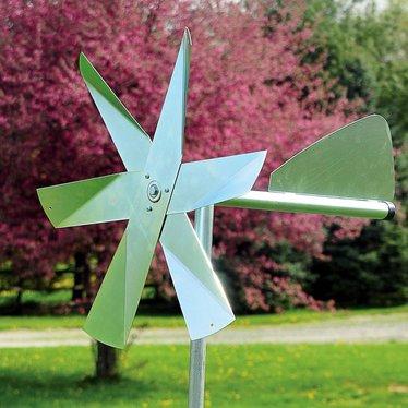 Mole Chasing Windmill Lehmans