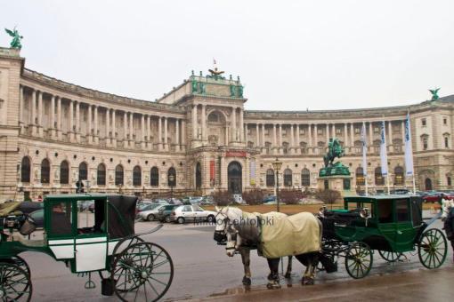 Wien ja hevoset