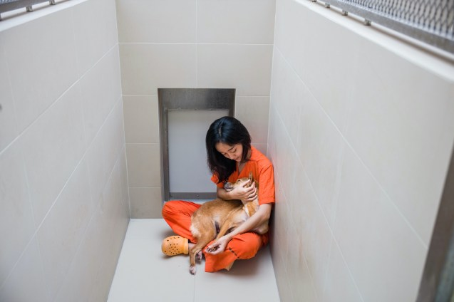 Veterinarian nurse, Aiw Wongla, 26, cuddles Madahva in her kennel. Madahva was brought in by Soi Dog'scommunity outreach program and couldn't stand up or walk on her own due to neurological problems caused by distemper. Thanks to the use of a balancing board to teach her body awareness, as well as some laser acupuncture treatment, she can now walk and even run.