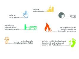 Die Vorteile von biobasierten Verbundwerkstoffen als nachhaltige Alternative für leichte Fahrzeugkarosserien.(Quelle: Fachagentur Nachwachsende Rohstotte FNR)