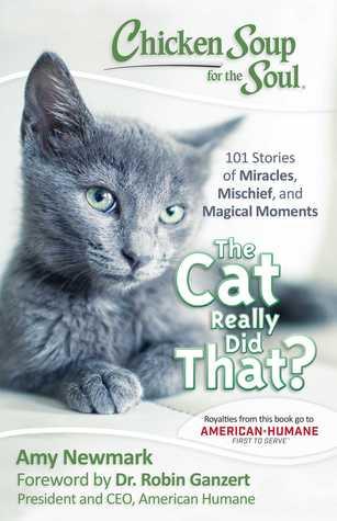 鸡肉的原因是因为猫的猫,是不是?