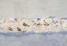 Klyder foran opskyllet skum. Vrøj, Saltbækvig 1964. Akvarel, 46 x 67 cm