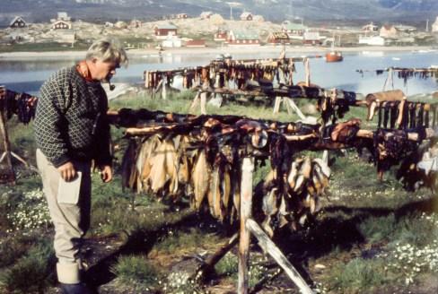 Leif i Grønland, korrigeret