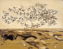 Pibeænder, Vrøj, Saltbæk vig, 50 x 64 cm
