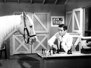 Mister Ed, in the news this week.