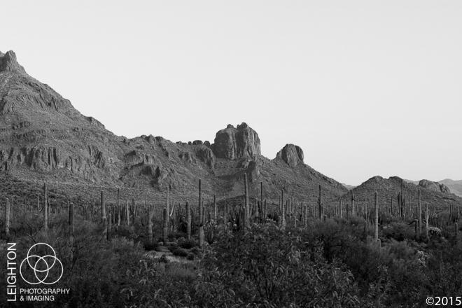 Diablo Mountains, Arizona