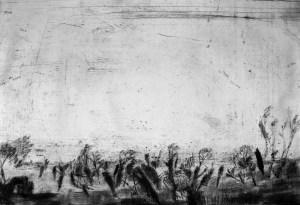 Susanne Theumer, Die singende Baumsavanne von Trotha II, 2016, Kaltnadel, 42 x 62 cm