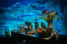 Airbnb Offers Glass Room Submerged In Shark-filled