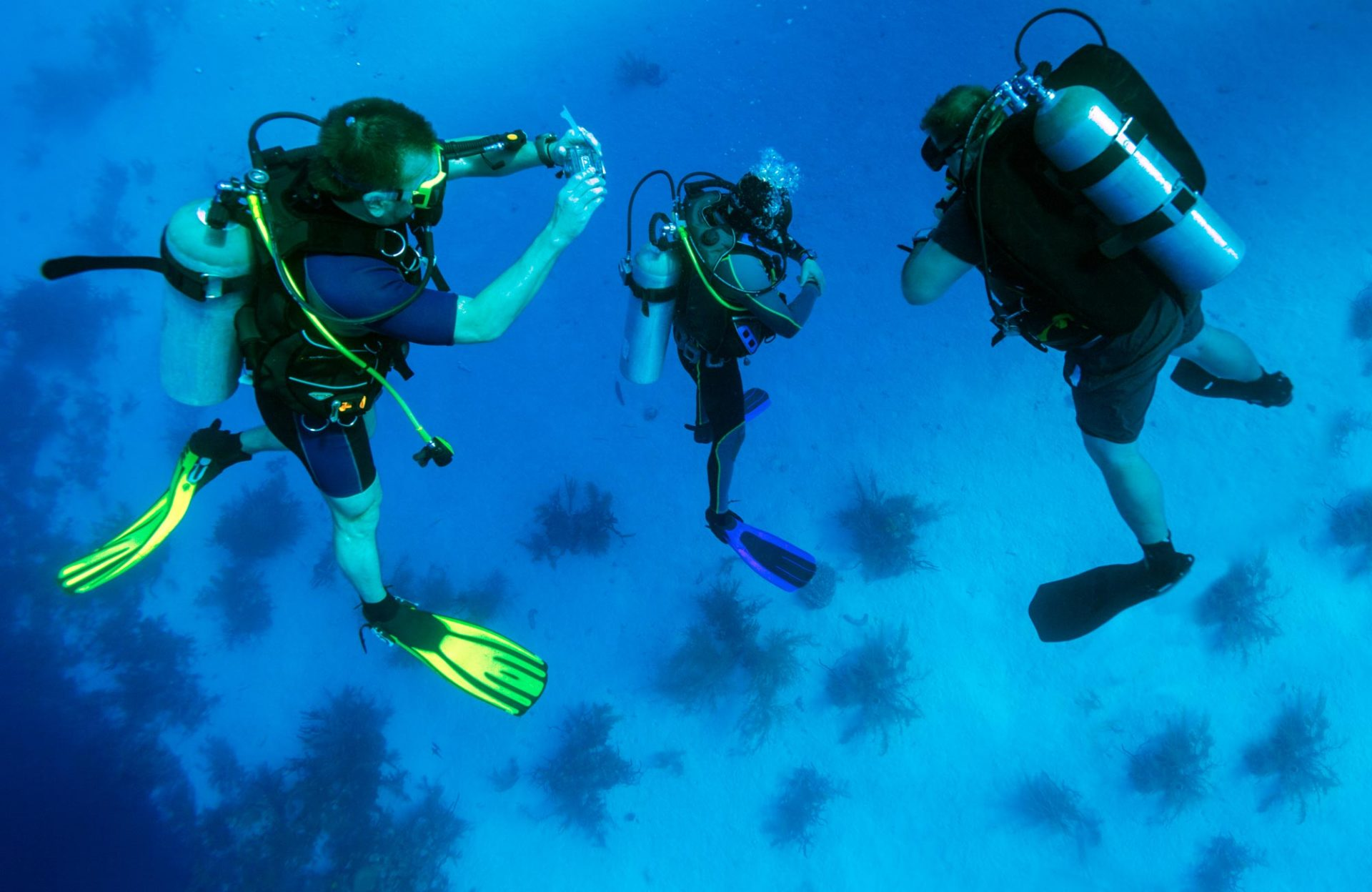 Scuba Diving Equipment List Essential Items For Your Next