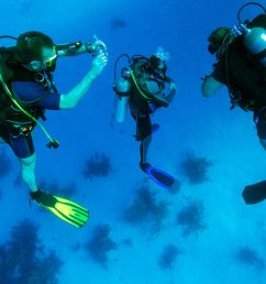 scuba diving equipment list essential items for your next dive [ 1920 x 1248 Pixel ]