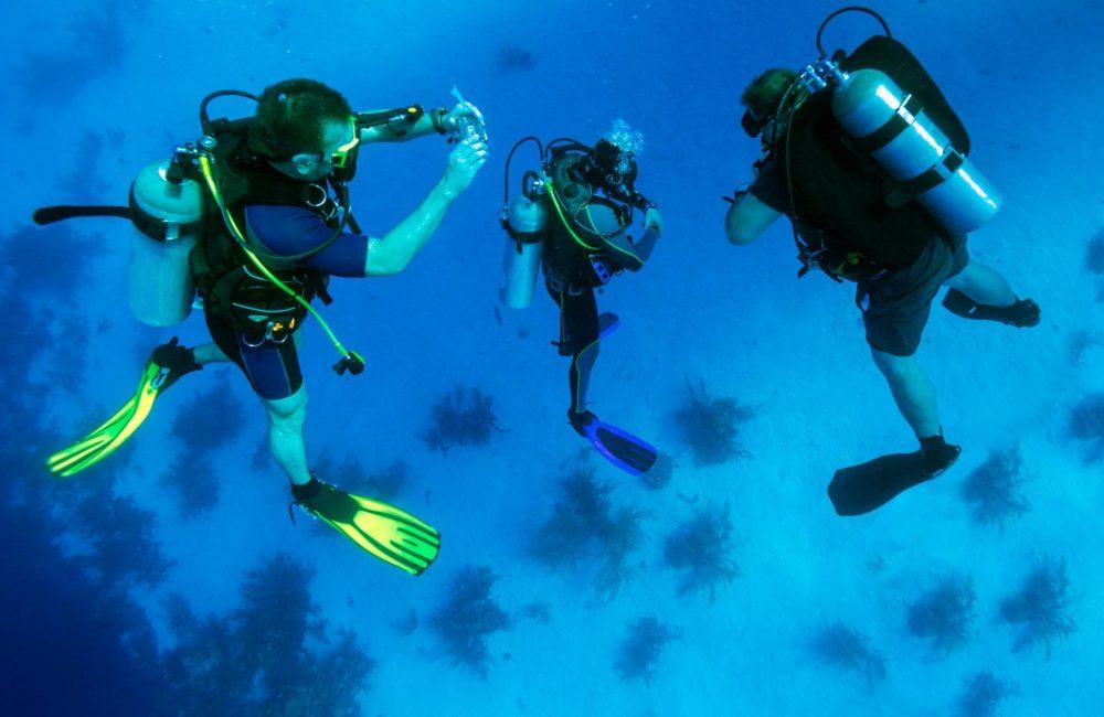 medium resolution of scuba diving equipment list essential items for your next dive