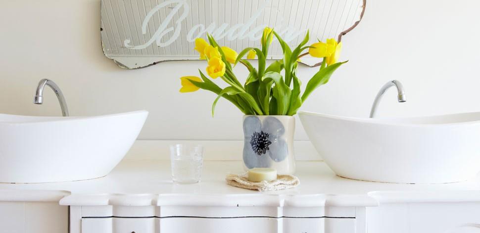 Come arredare il bagno con le piante  LEITV
