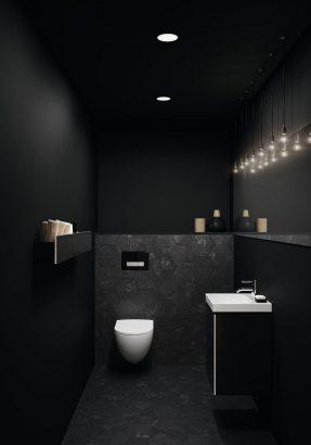 toilettes 27 conseils pour adopter le