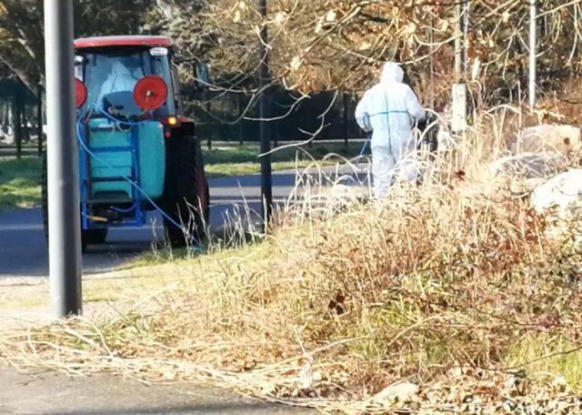 capture d'écran de la vidéo montrant des employés municipaux pulvérisant du glyphosate à Cornebarrieu © Patrick Jimena