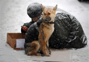 RUSSIA-HOMELESS-DOG