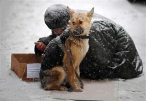 RUSSIA-HOMELESS-DOG