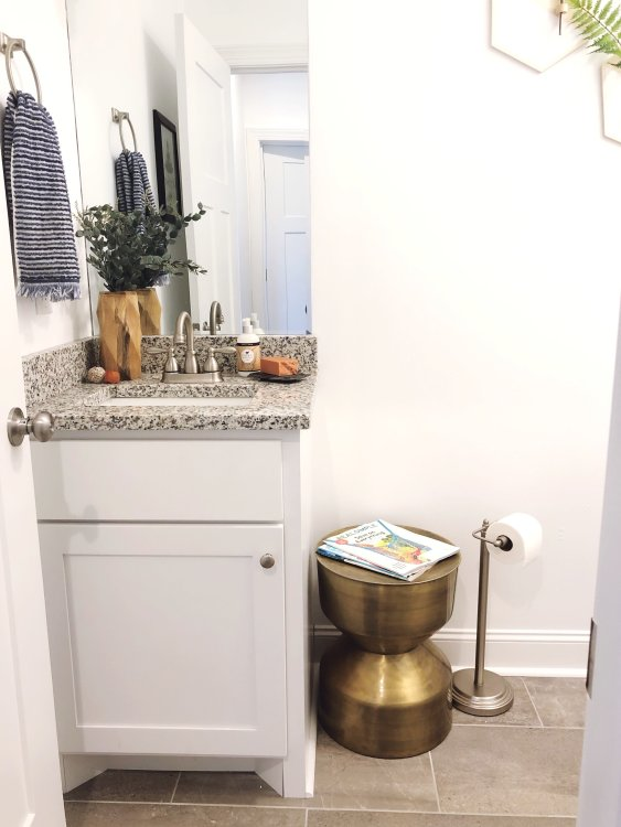 small guest bathroom style