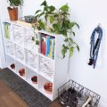 pet supply storage tips