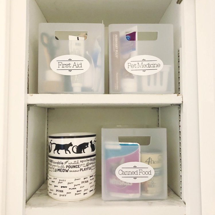 pet first aid and medicine cabinet