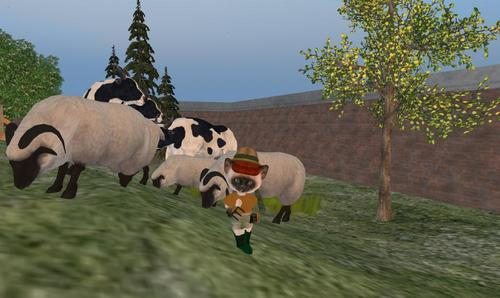 Dinkie Farmer in Second Life