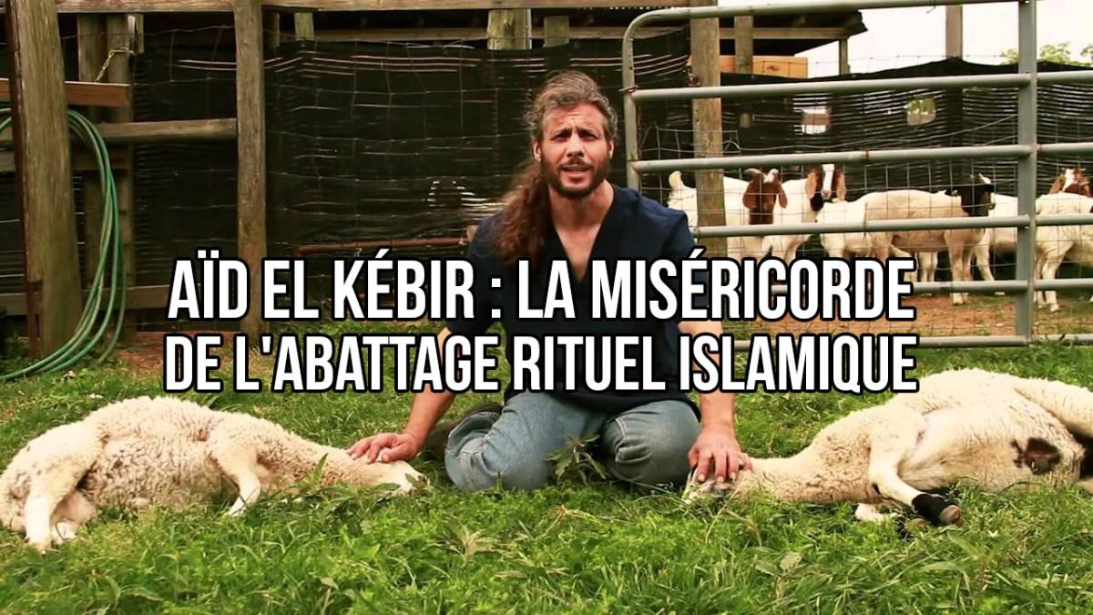 Aïd el Kébir : la miséricorde de l'abattage rituel islamique