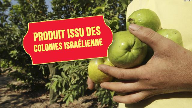 La France impose un étiquetage des produits des colonies israhelliennes !