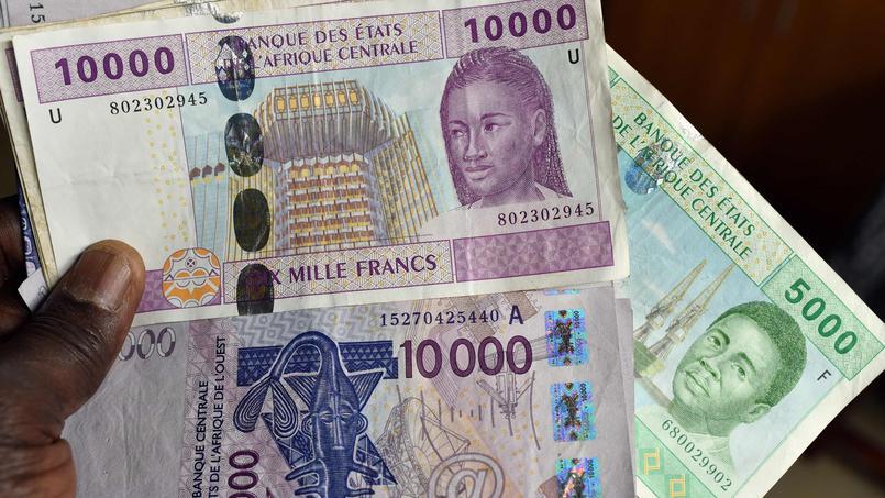 Fabrique En France Le Franc Cfa Est Sur La Sellette Le Libre Penseur