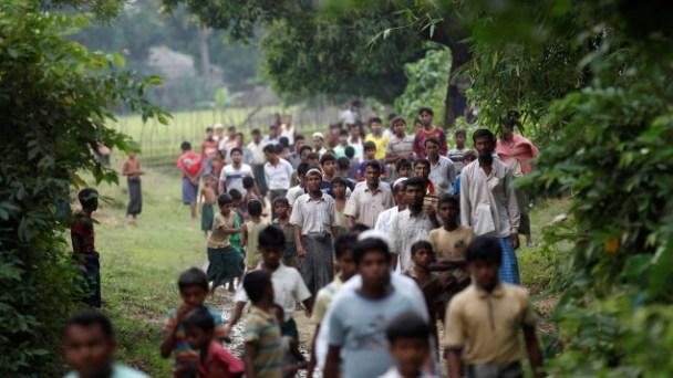 rohingyas-maungdaw-birmanie-myanmar