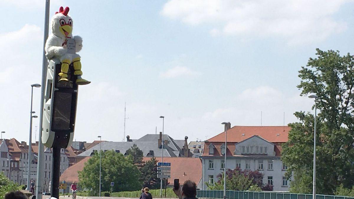 Strasbourg : il en a tellement « marre d'être plumé » qu'il monte, déguisé en coq, sur un radar