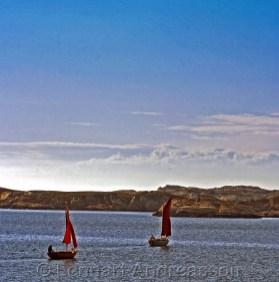 Barkade segel på väg