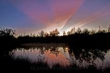 Dammen i kvällsljus