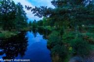Ronnebyån i kvällsljus