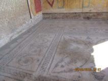 Insula delle Muse: mosaici pavimentali