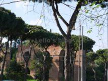 Arco di Dolabella : Acquedotto Neroniano