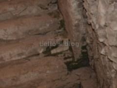 Vicus Caprarius: scala con resti marmorei