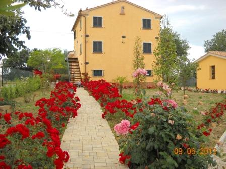 Casa Vacanze Angelica Ostra Vetere Le Marche