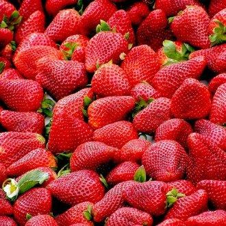 fraise clery