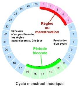 Dossier précarité menstruelle