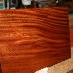 kayu mahogany