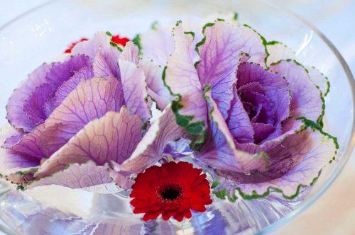 Noordhoek Cafe & Deli - flowers